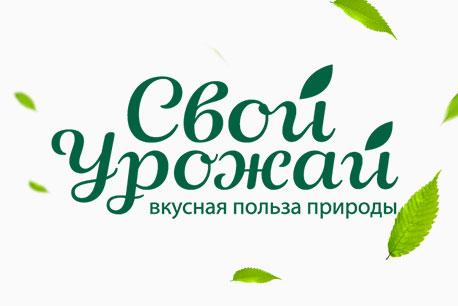 логотип замороженной продукции